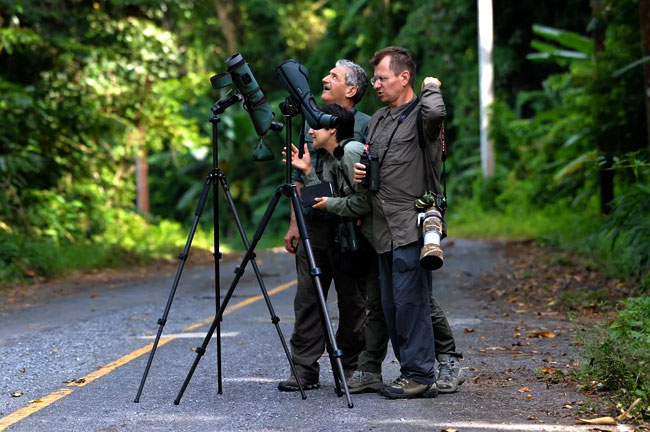 Mae Wong Bird Watching & Photography 3 Days
